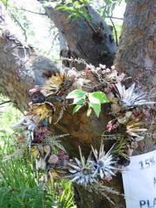 Indigenous christmas wreath