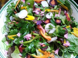 Fresh rainbow salad