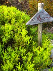 Geelbos and footpath sign