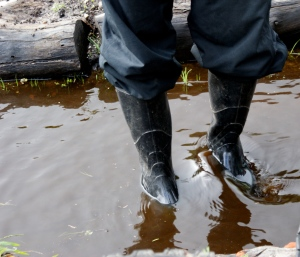 Gumboots required!