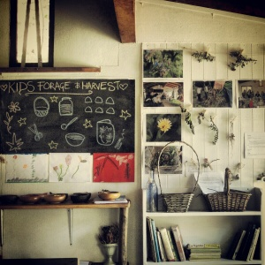 Forage and Harvest classroom