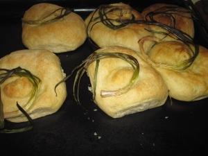 Tulbaghia rolls