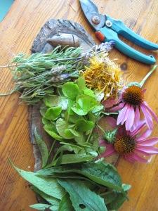 Body Butter herbs