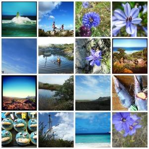 Blue photos