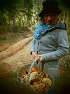 Mushroom hunting Cape Town