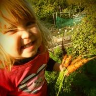 Happy carrots