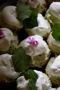Pelargonium and Honeybushcupcakes