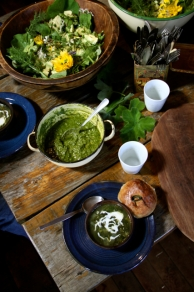 Fynbos Foraging Course