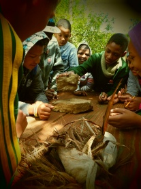 school kids learning about Strelitzia seeds