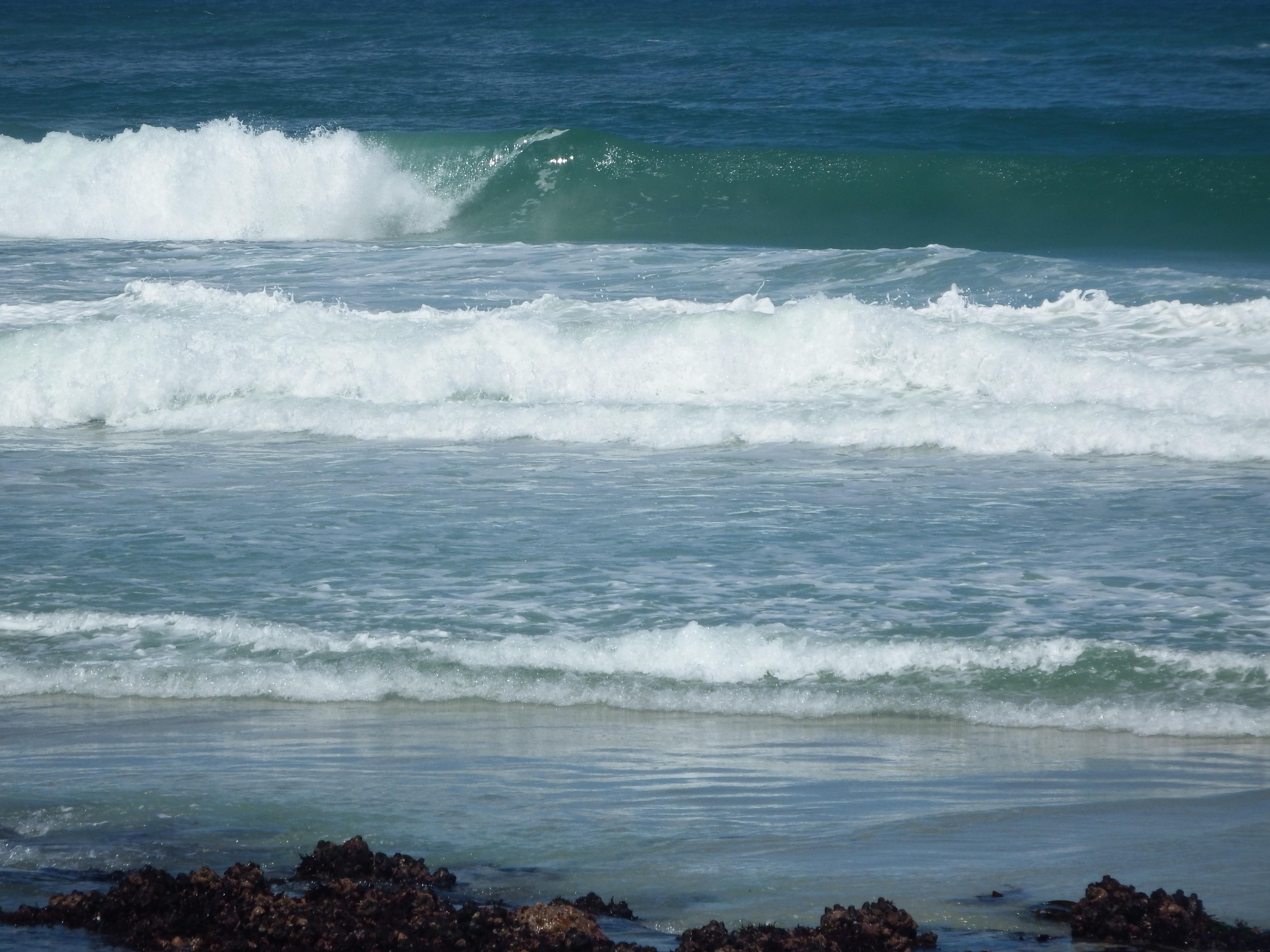Scarborough Beach Veld And Seas Blog