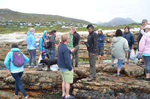 Coastal Foraging - Good Hope Gardens Nursery