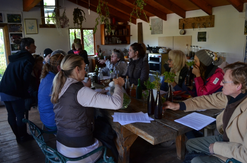 Foraging courses Cape Town