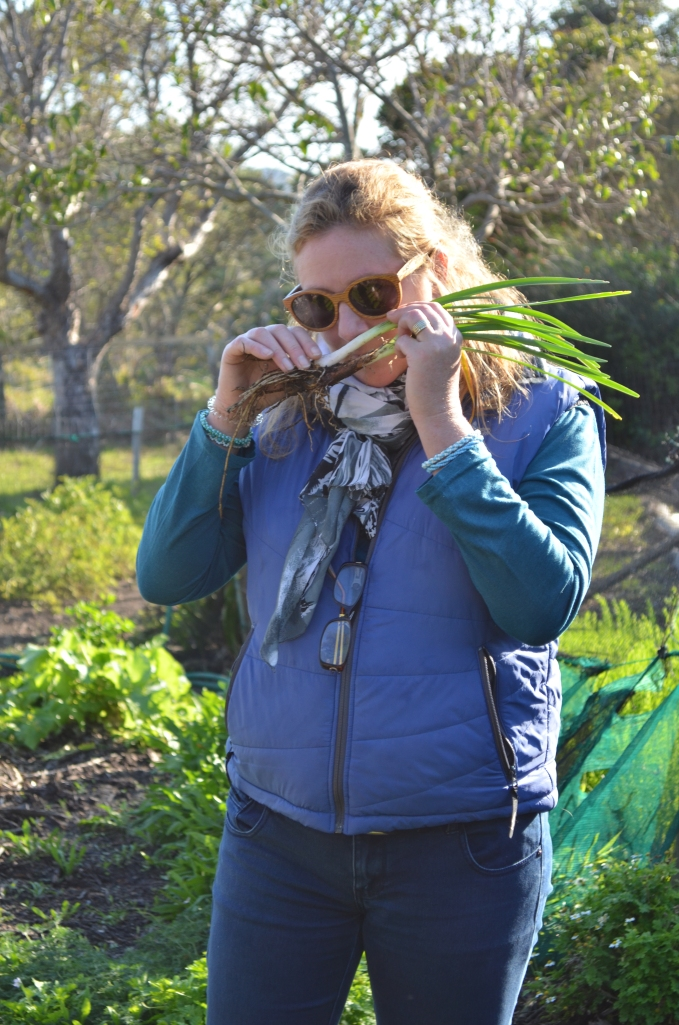 Wild food foraging Cape Town