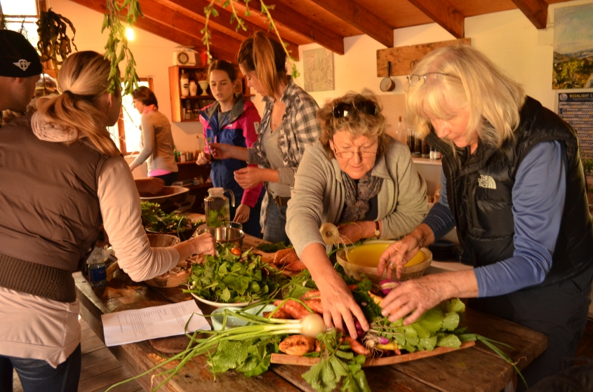 Forage Harvest Feast Fynbos foraging courses