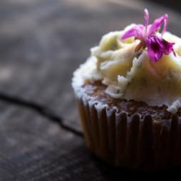 Rooibosand Pepermint Pelargonium cupcakes
