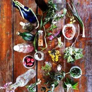Indigenous edible plants with Veld and Sea